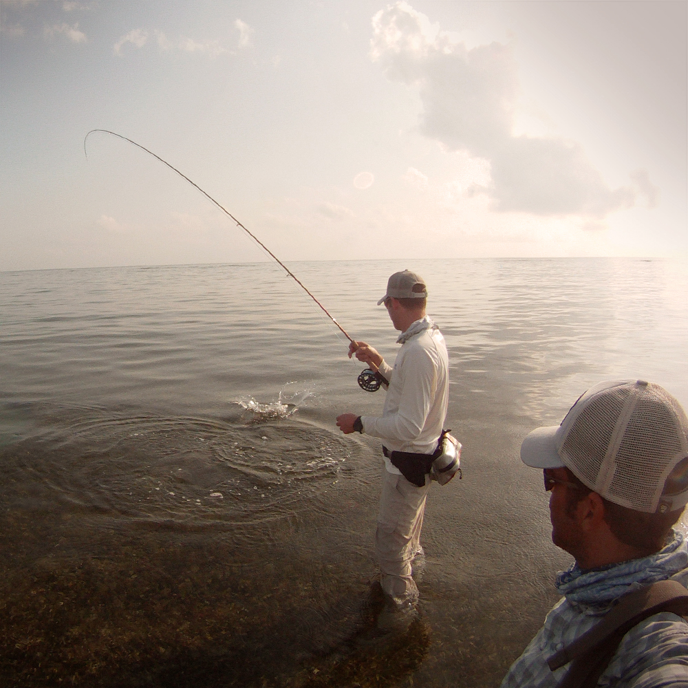 Fighting a Cayman bonefish