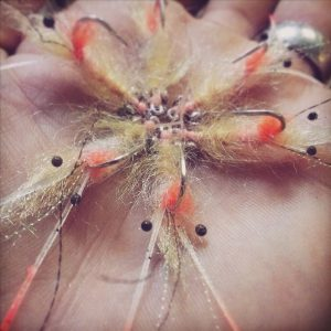 Strip Tease Bonefish Fly