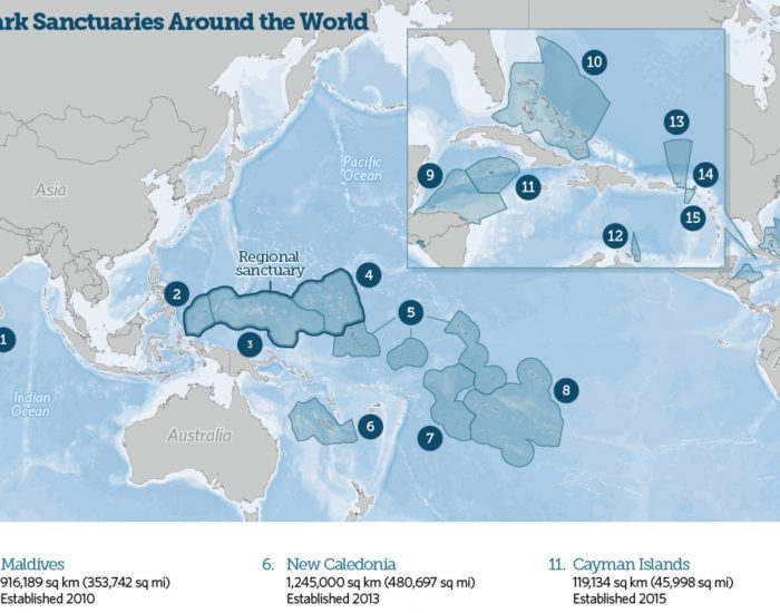 Shark Sanctuary Map
